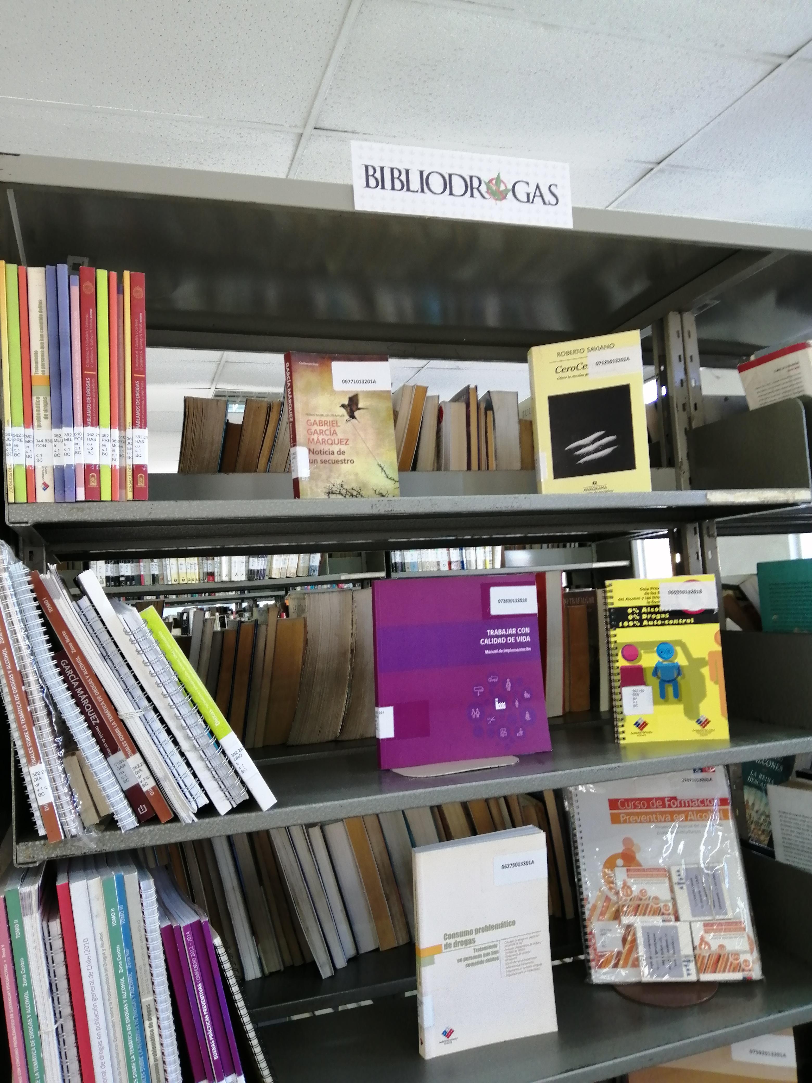 Nuevo Centro de Interés, Biblioteca Central