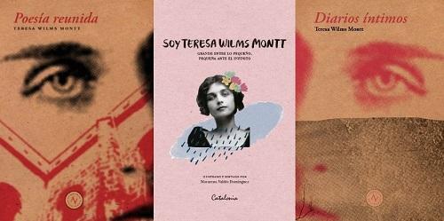 Teresa Wilms Montt: Poesía, Diario íntimo y Biografía [Reseña]